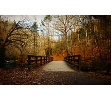 Walking into The Great Smoky Mountains Photographic Print