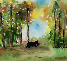 Scottie Dog in the woods by archyscottie