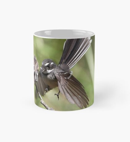 Grey Fantail ~ Come on ... flap like this baby !!  Mug