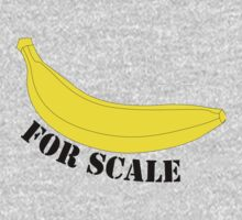 Banana for scale by nighthawkerton