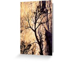 Black Oak Silhouette Greeting Card