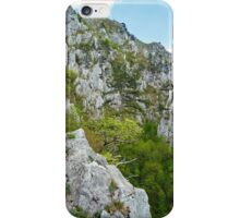 Rocky trail on mountains iPhone Case/Skin