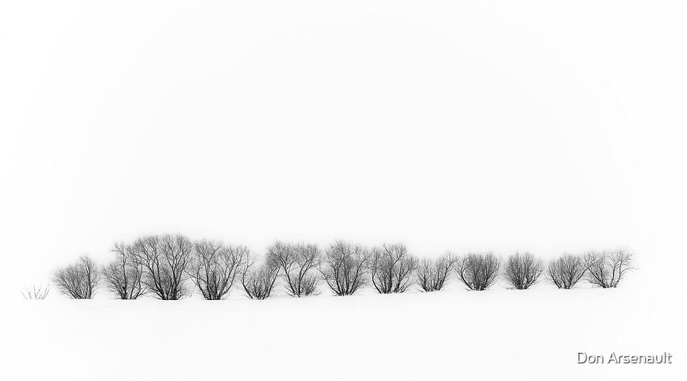 Winter Scene by Don Arsenault