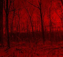 Dreams Of A Red Forest by MotherNature2