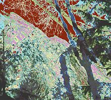 Winterland 3 Digital Image by Kenneth Grzesik