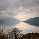 On the Bonnie, Bonnie Banks of Loch Lomond by Christine Smith
