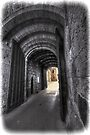 Alnwick Castle Gate by Nigel Bangert