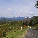 Mt Warning, From QLD,  NSW, Border by MardiGCalero