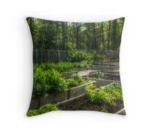 Colonial kitchen garden behind the Berrien Mansion Throw Pillow