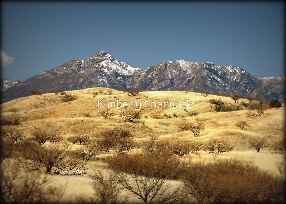 Snowy Peaks on a Desert Plain by Kimberly Chadwick