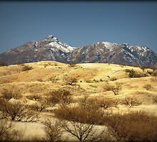 Snowy Peaks on a Desert Plain by Kimberly Chadwick