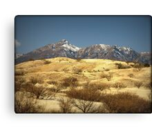 Snowy Peaks on a Desert Plain Canvas Print