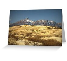 Snowy Peaks on a Desert Plain Greeting Card
