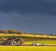 Storm Clouds Over Canola by Paul Amyes