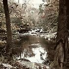 Ole dirt creek by fem-rage-