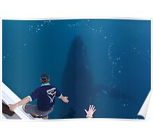 Whale Swimming Under Our Boat Poster