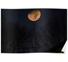 Out Back with the Moon and Stars Poster
