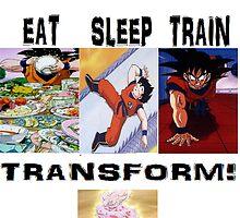 eat train sleep=transform by tmckee61