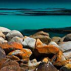 Gardens Rocks - Bay of Fires, Tasmania by clickedbynic