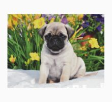 Cute Puppy Caesar the Pug by AiReal Apparel One Piece - Short Sleeve
