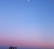 The Sunset and the Moon by Sophie Watson