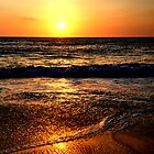 Rhys ocean beeach sunset by collpics