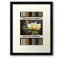 I Like You In Pants Framed Print