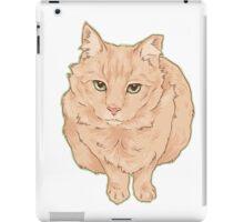 Most Beloved Feral Cat / Ginger iPad Case/Skin