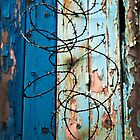 Barbed Wire and fence by russw