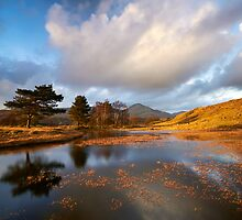 The Tarn by Jeanie