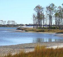 Marshy Coastal Gateway~ by GraNadur