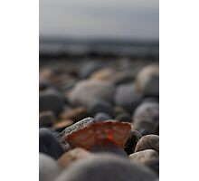 Empty Shell Photographic Print