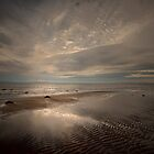 A WINTERS WALK ON THE BEACH by leonie7