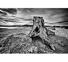 Remnants Photographic Print