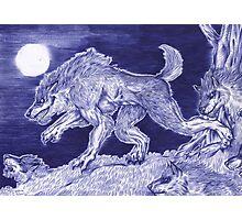 Werewolf pack 1 Photographic Print