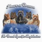I Have a Dream, NO BSL by Beverly Lussier