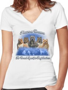 I Have a Dream, NO BSL Women's Fitted V-Neck T-Shirt