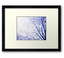 Flowering cherry tree - multiple exposure Framed Print