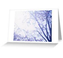 Flowering cherry tree - multiple exposure Greeting Card