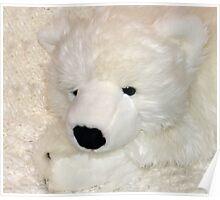 Snow Bear Poster