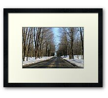 Wooded Drive Framed Print