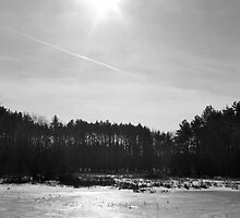 Black and White lake and woods by jjastren
