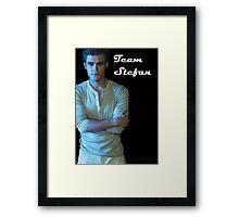 Team Stefan Framed Print