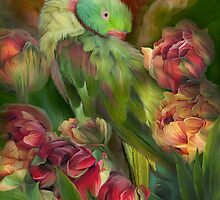 Parrot In Parrot Tulips by Carol  Cavalaris