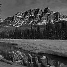 Castle Mountain in Black and White by Michael Collier