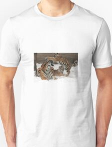 Tigers in snow  T-Shirt
