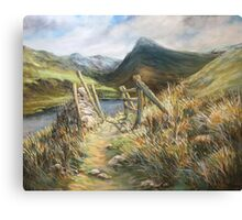 Irish winter Canvas Print