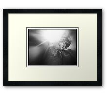 ©AS Eyy No Flash IA Monochrome Framed Print