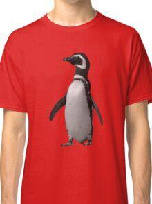Magellanic Penguin, Falkland Islands Classic T-Shirt