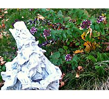 The wizard in the garden Photographic Print